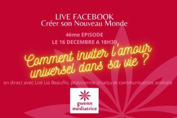 Live Facebook amour universel Loé Lia Beaufils