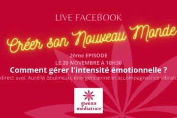 Live Facebook Aurélia Boulineau